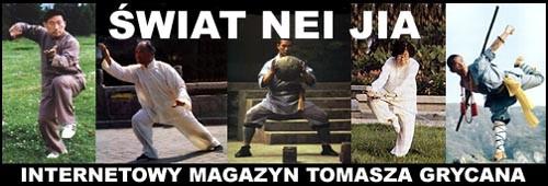 Strona Tomasza Grycana poświęcona sztukom walki